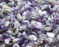 紫水晶のかけら
